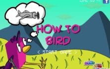 how to bird
